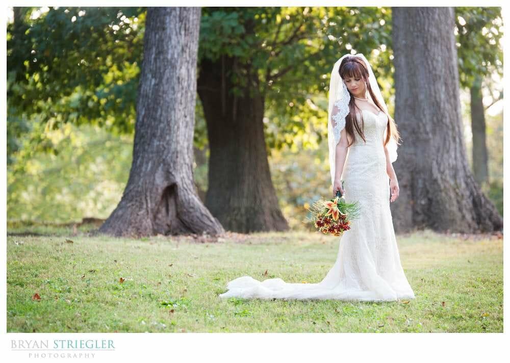 Ashley's Arkansas Bridal Portraits at Magnolia Gardens in field