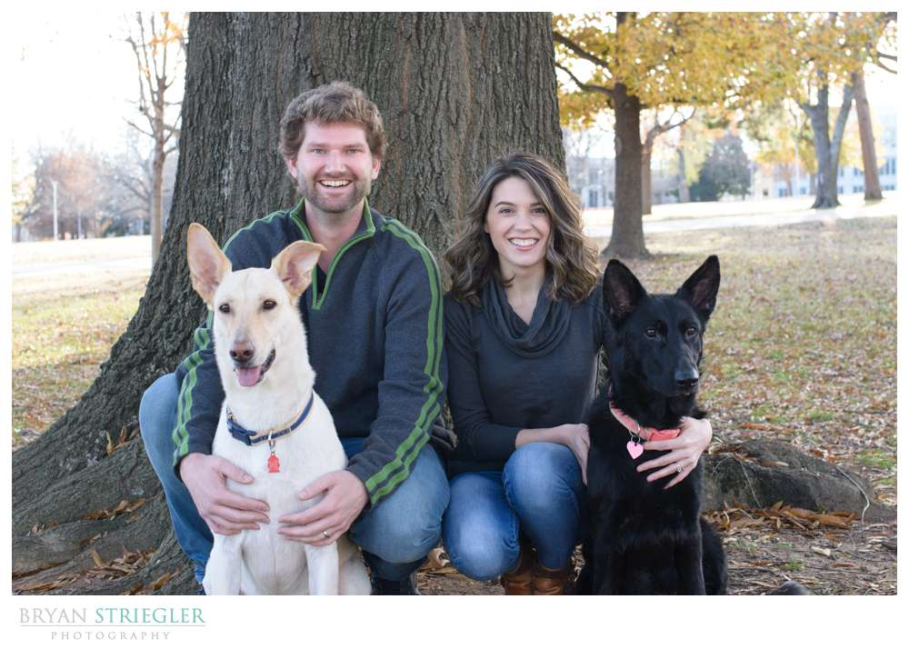 Post wedding portraits squatting with dogs
